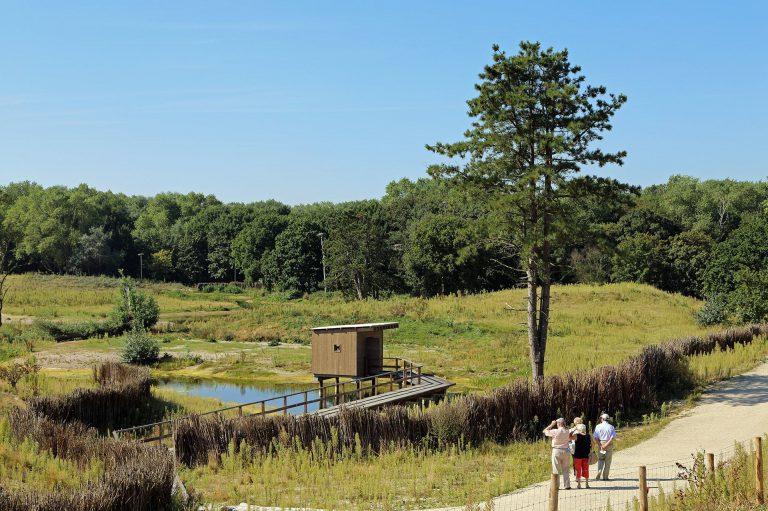 Nature - De Lombarde