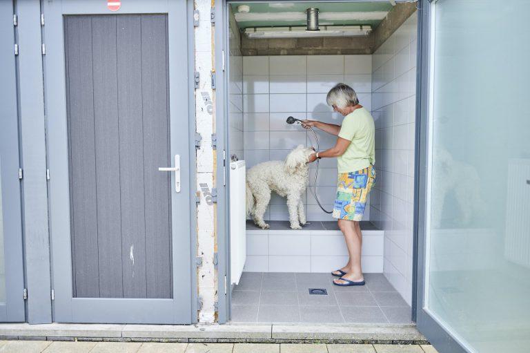 Huisdieren - De Lombarde